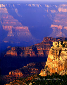 North-Rim-Grand-Canyon_