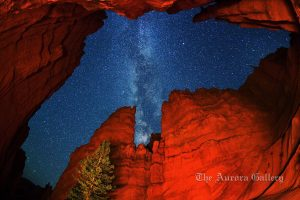 ***EXCLUSIVE***  UTAH - SEPTEMBER 20: A photograph of 'Wall Street' canyon at Bryce Canyon National Park on September 20, 2011 in Utah.  Stunningly beautiful images capture the glory of the Milky Way taken with just a simple digital camera. Revealing the Earth's place in our swirling galaxy, the pictures on display look like they could have been snapped with a million pound telescope not a readily available camera. And incredibly, photographer Royce Bair has only been turning his lens to the night's sky for the past six months. Calling his series