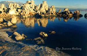 Morning Mirrors, Mono Lake, California