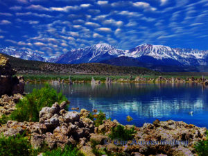 Mirrored View of the Sierras, Mono Lake, California