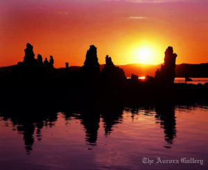 Ghostly Sentinals at Sunrise, Mono Lake, California