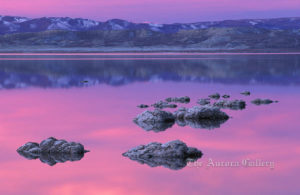 Reciprocity at Early Dawn, Mono Lake, California