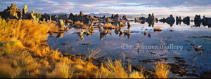 Mono Lake landscape. Mono Lake, California, USA